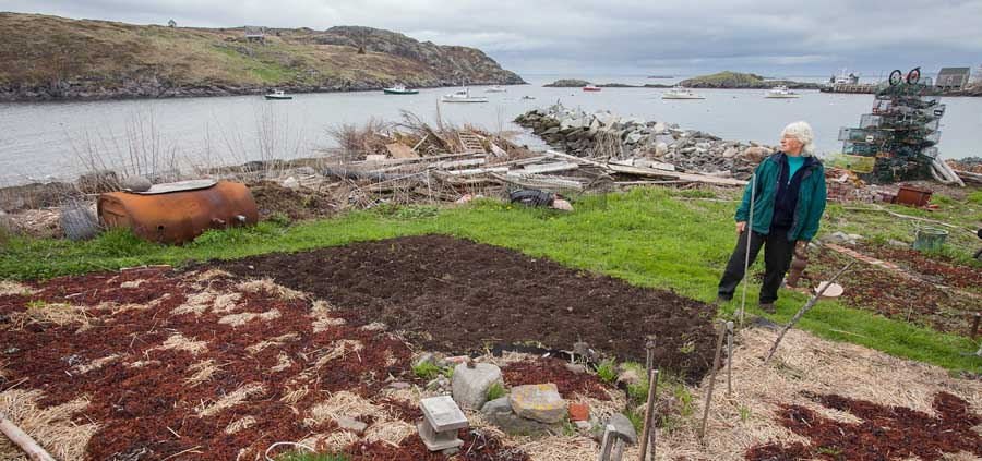 Kathie puts a garden to bed for the winter